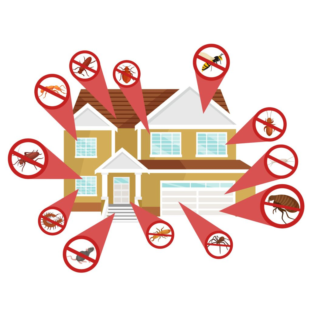 keep the surrounding areas of your property clean
