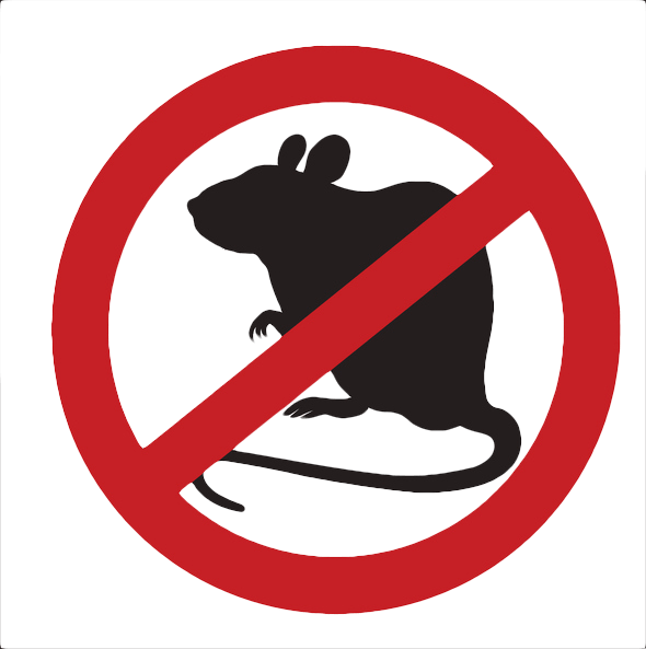 Don't let pesky pests interfere