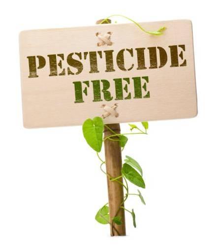 Pesticide Free Sydney