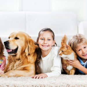 Safe-Around-Children-and-Pets
