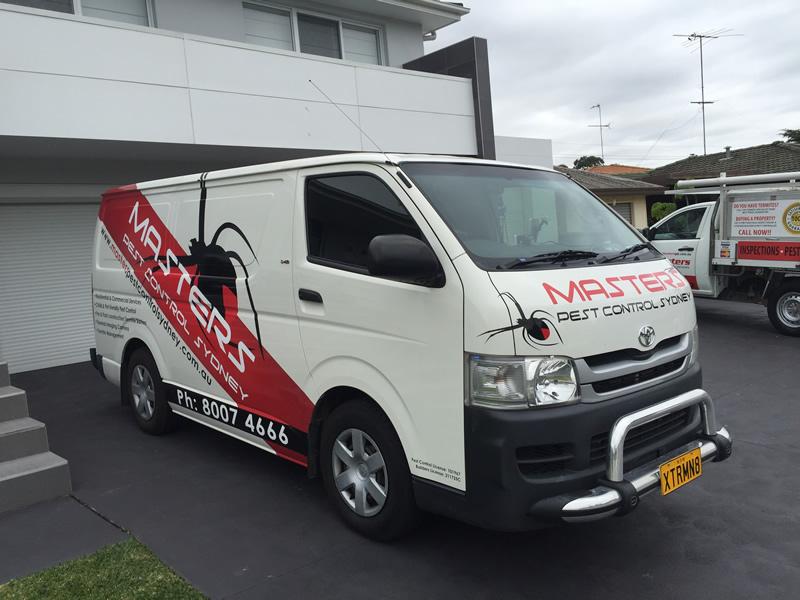 Professional Sydney Service