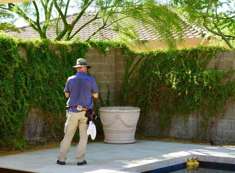 spring outdoor pest inspection