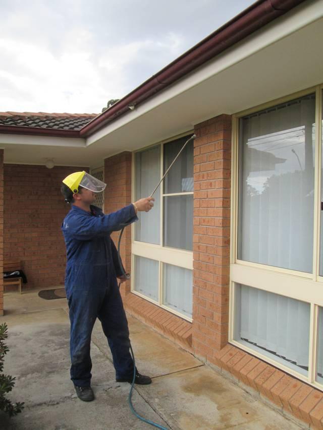 Exterior safe pest management Sydney